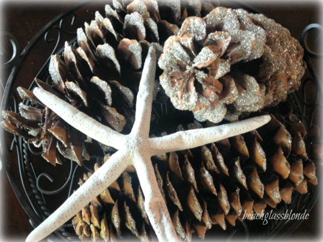 Pine cones & starfish
